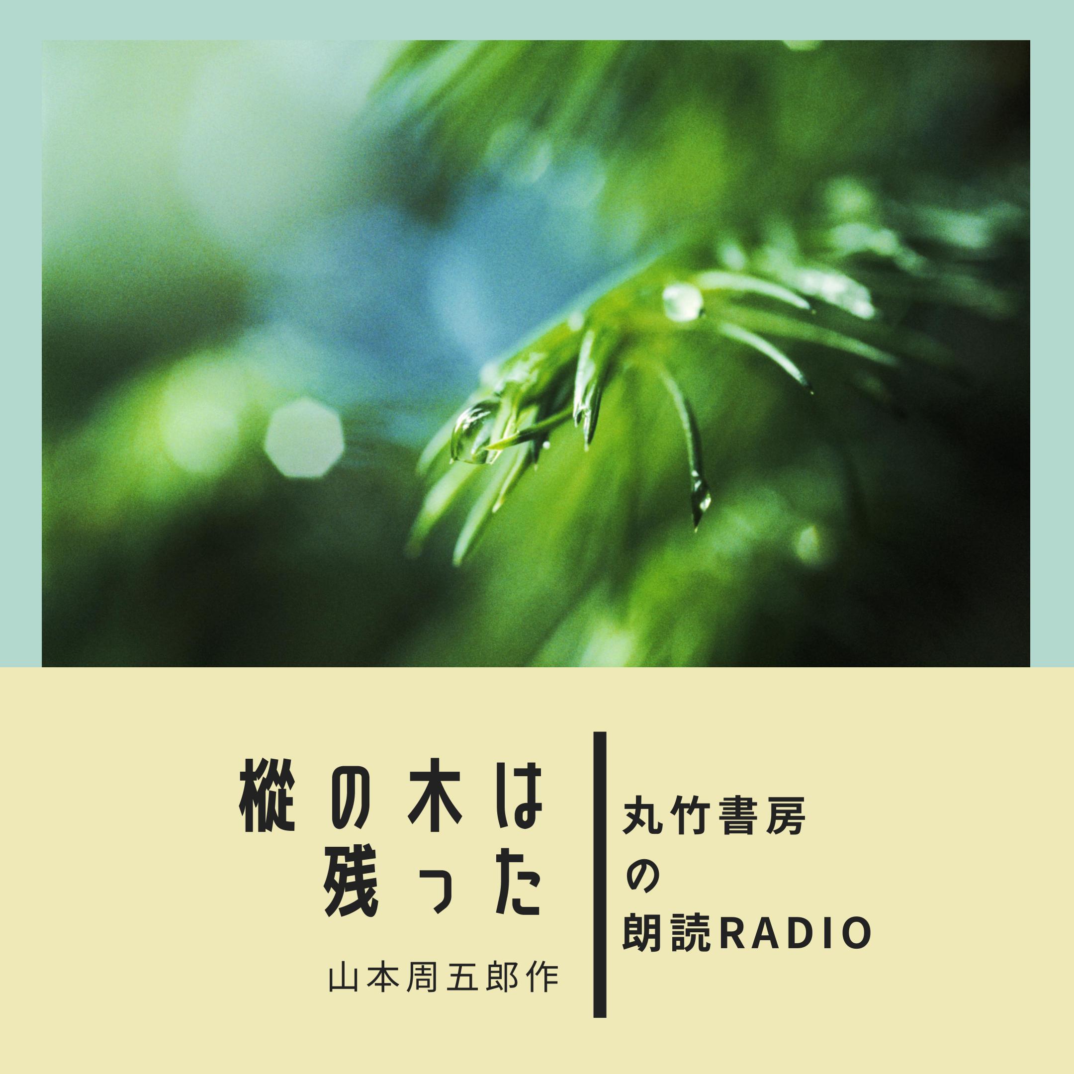 朗読 山本周五郎作 「樅の木は残った  第十話 こおろぎ」